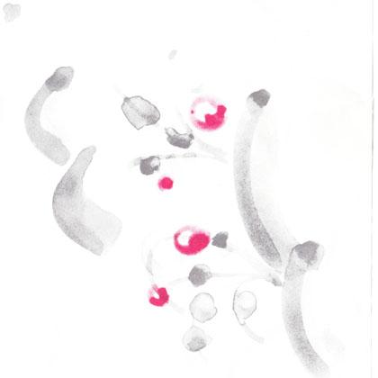 毎日が和菓子日和 | 立川伊勢屋 | 包み紙