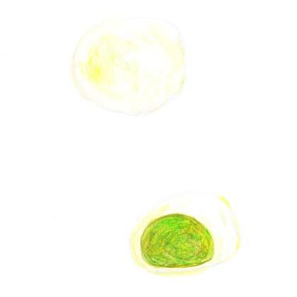 毎日が和菓子日和 | 松月堂横浜三ツ沢 | ずんだ大福