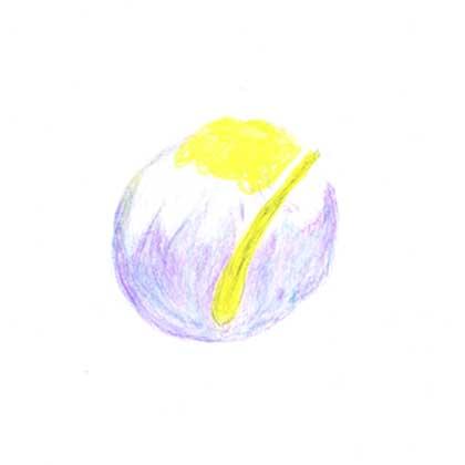 毎日が和菓子日和 | まほろ堂蒼月 | 花菖蒲