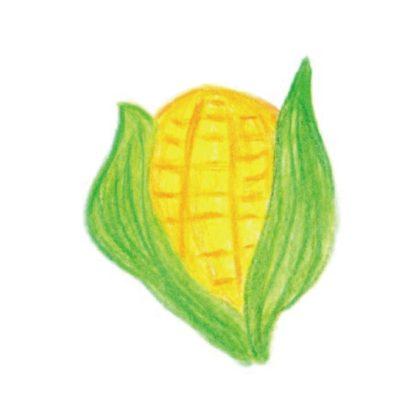 毎日が和菓子日和 | 後藤 | 唐黍(季節の上生菓子)
