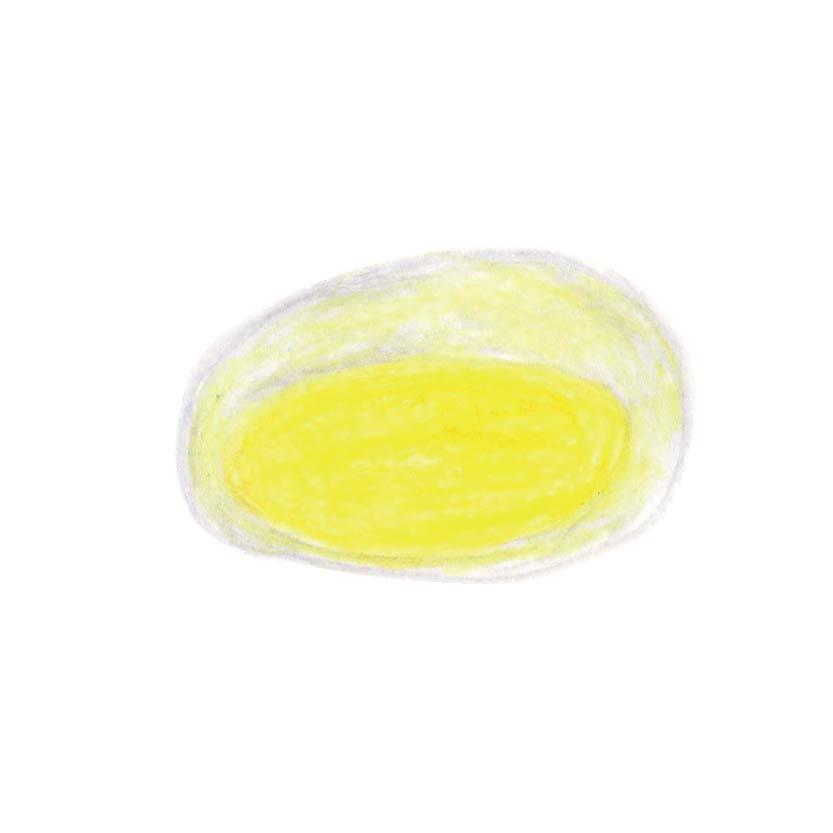 毎日が和菓子日和 | 東京・市ヶ谷 岡埜栄泉 | 水まんじゅう・レモン(断面イメージ)
