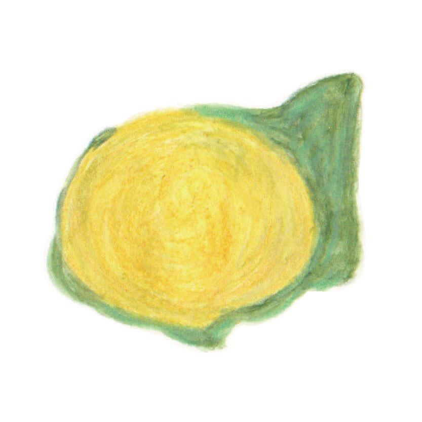 毎日が和菓子日和 | 東京・岬屋 | 菊の雫