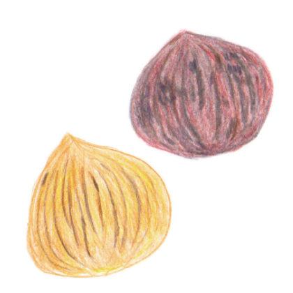 毎日が和菓子日和 | 京都・若菜屋 | 渋皮栗焼き栗きんとん&焼き栗きんとん