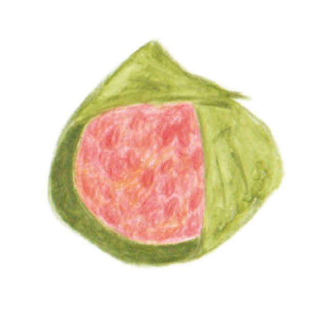 毎日が和菓子日和 | まほろ堂蒼月 | 柿の道明寺