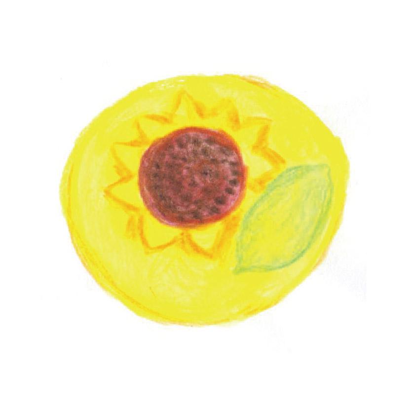 毎日が和菓子日和   まほろ堂蒼月   向日葵