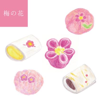 毎日が和菓子日和 | 和菓子の意匠と銘を愉しむ | 梅の花