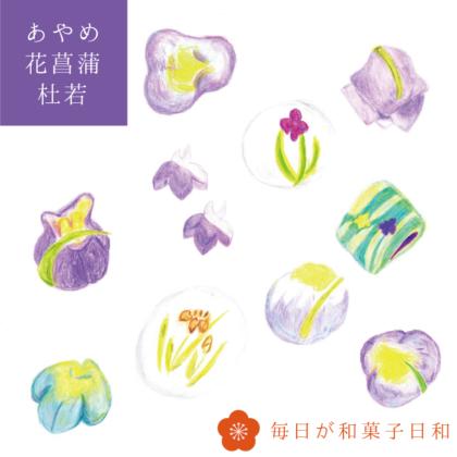 毎日が和菓子日和 | 和菓子の意匠と銘を愉しむ | あやめ・花菖蒲・杜若(かきつばた)