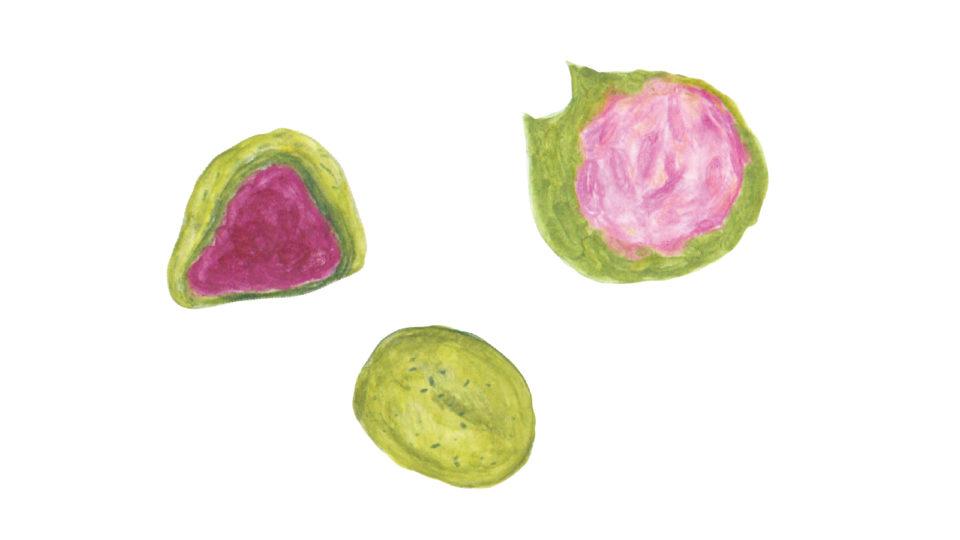 毎日が和菓子日和 | 暦生活 | 季節の和菓子帖・桃の節句・雛祭り | ひな菓子