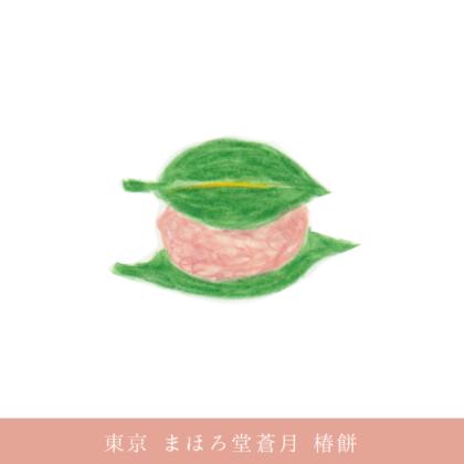 毎日が和菓子日和 |東京 季節の和菓子 早春 | まほろ堂蒼月 | 椿餅(源氏物語にも出てくる御菓子)