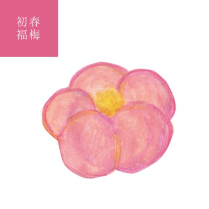 毎日が和菓子日和 | 季節の意匠 1月 初春