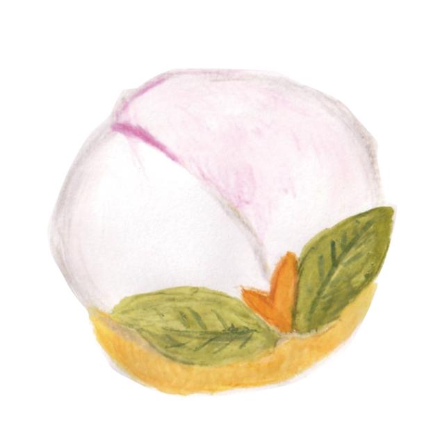 毎日が和菓子日和   長崎・松翁軒   桃カステラ